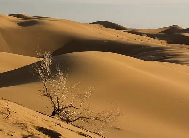 Halvan Desert, Tabas
