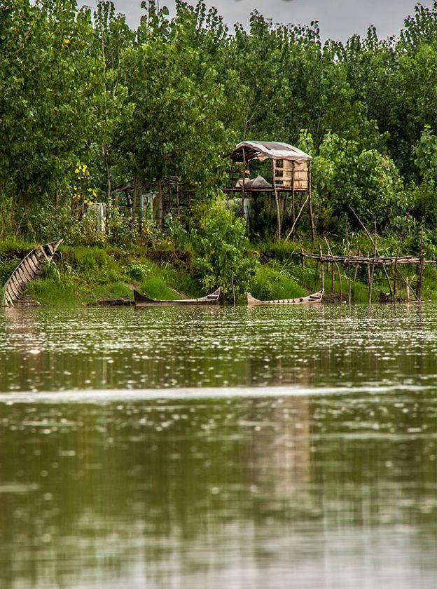 lagoon wetland